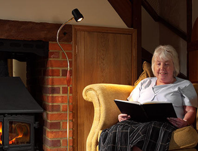 Alex Floor Lounge Reading Light - Fireplace